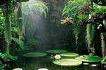 Garden of love and song - Forio Ischia Giardini Mortella by Enzo Rando